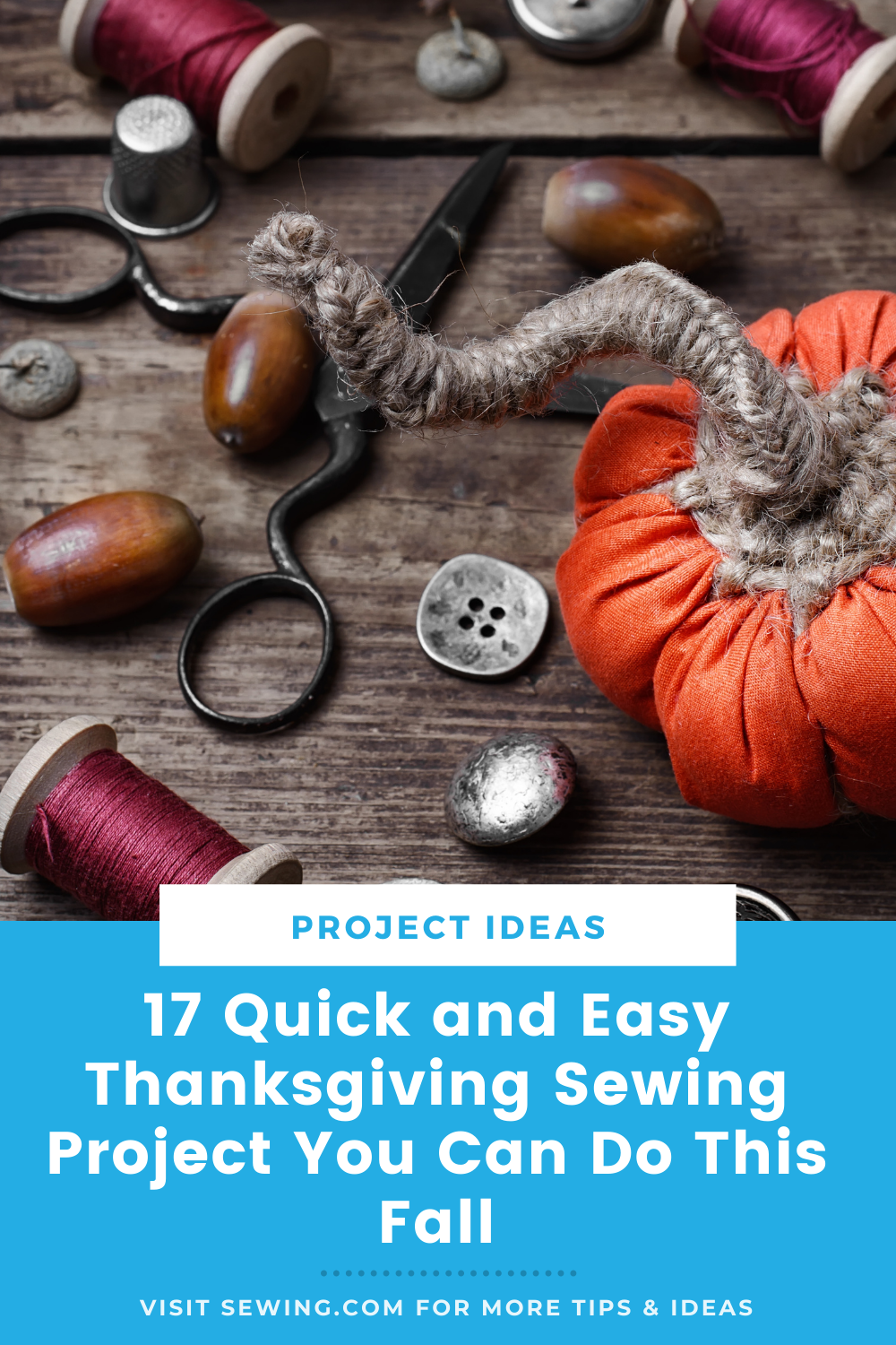 placard | 17 Quick and Easy Thanksgiving Sewing Project You Can Do This Fall